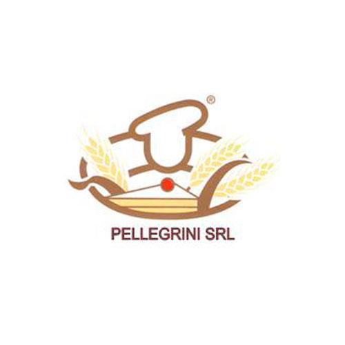 Pellegrini Srl Logo